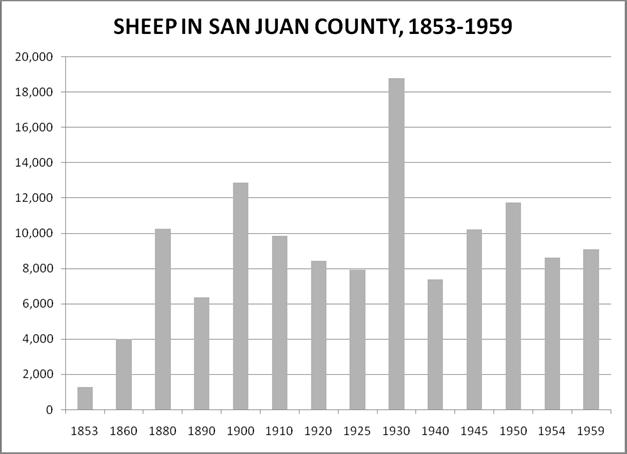Sheep in SJC
