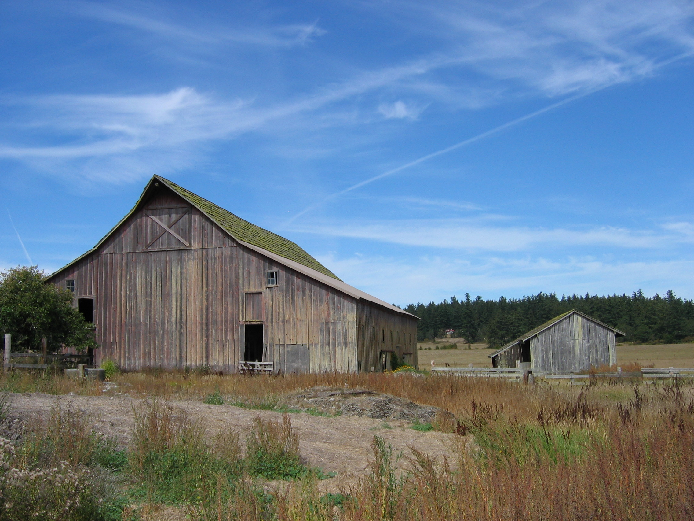 Old Barns On Long Island