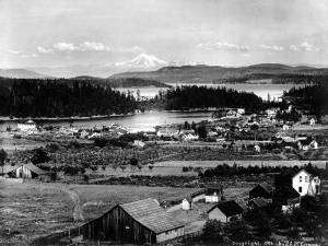 Friday_Harbor_San_Juan_Island_Washington_1906